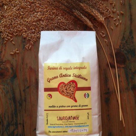 Farina di Grani Antichi Siciliani L' Agricoltore